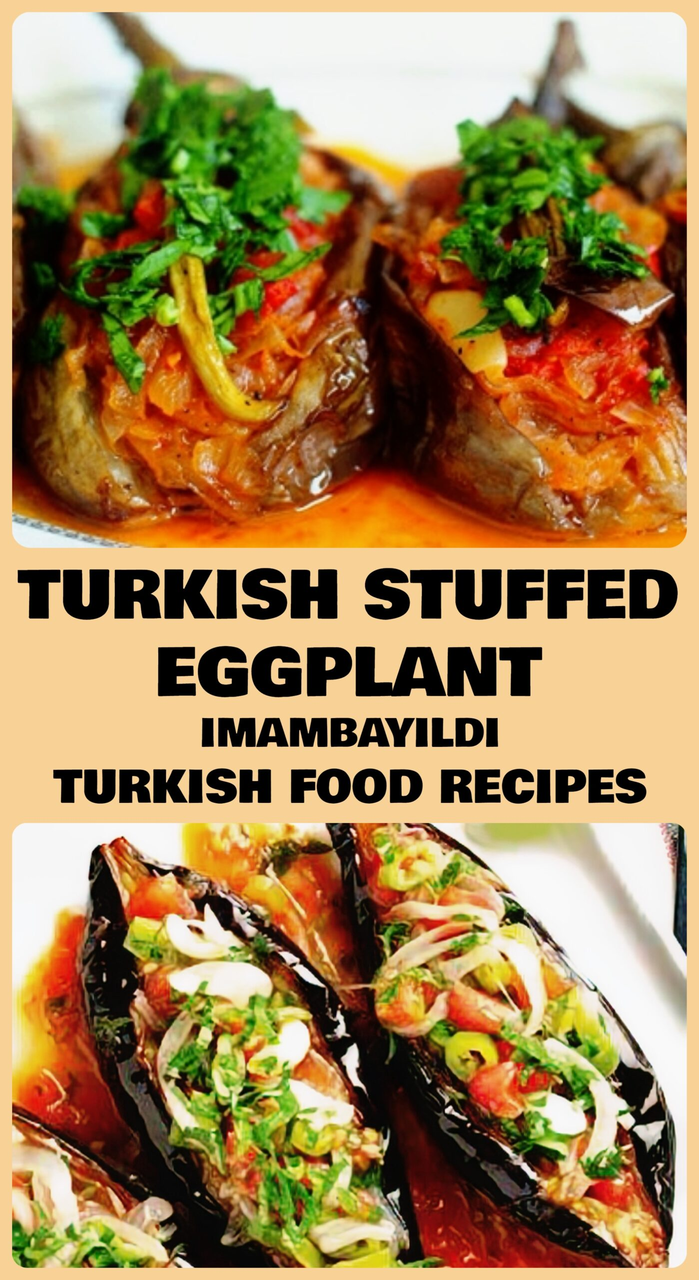 Turkish Stuffed Eggplant - Imambayildi Recipe